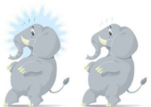 elephants tip toe concurrent use - small